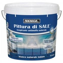 PITTURA DI SALE  LT  12
